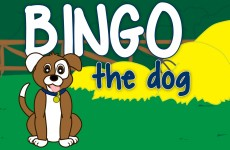 BINGO THE DOG