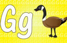 Letter G Song for Kids - Words that Start with G - Animals that Start with G