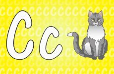 Letter C Song for Kids - Words that Start with C - Animals that Start with C